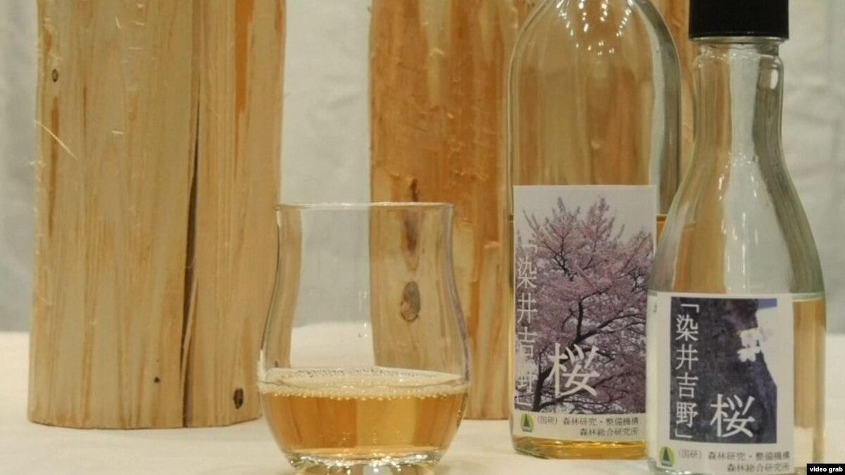 Alkool nga pemët