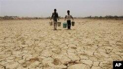 تغییرات اقلیم در چند سال گذشته منجر به خشکسالی شدید در مناطق گرمسیر هند شده است.