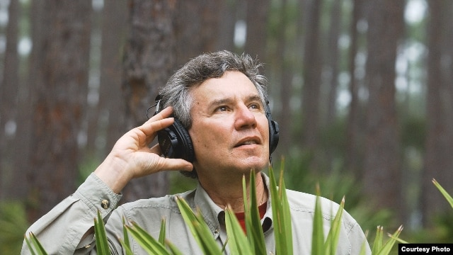 Bernie Krausehas recorded more than 15,000 species and 4,000 hours of wild soundcapes. (Tim Chapman)
