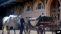 Philip Barnard-Brown, Senior Coachman at the Buckingham Palace Mews, leads a Windsor Grey, one of the four horses that will pull the carriage at the wedding of Prince Harry and Meghan Markle, past the Ascot Landau open carriage, at the Royal Mews at Bucki