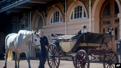 meghan and harry choose horse drawn carriage for wedding day