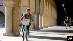 加州史坦福大學生在校園中騎單車。