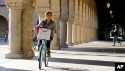 스탠포드 대학교 교정에서 학생이 자전거를 타고 있다.