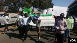 Some of the protesters that took to the street in Harare on Tuesday.