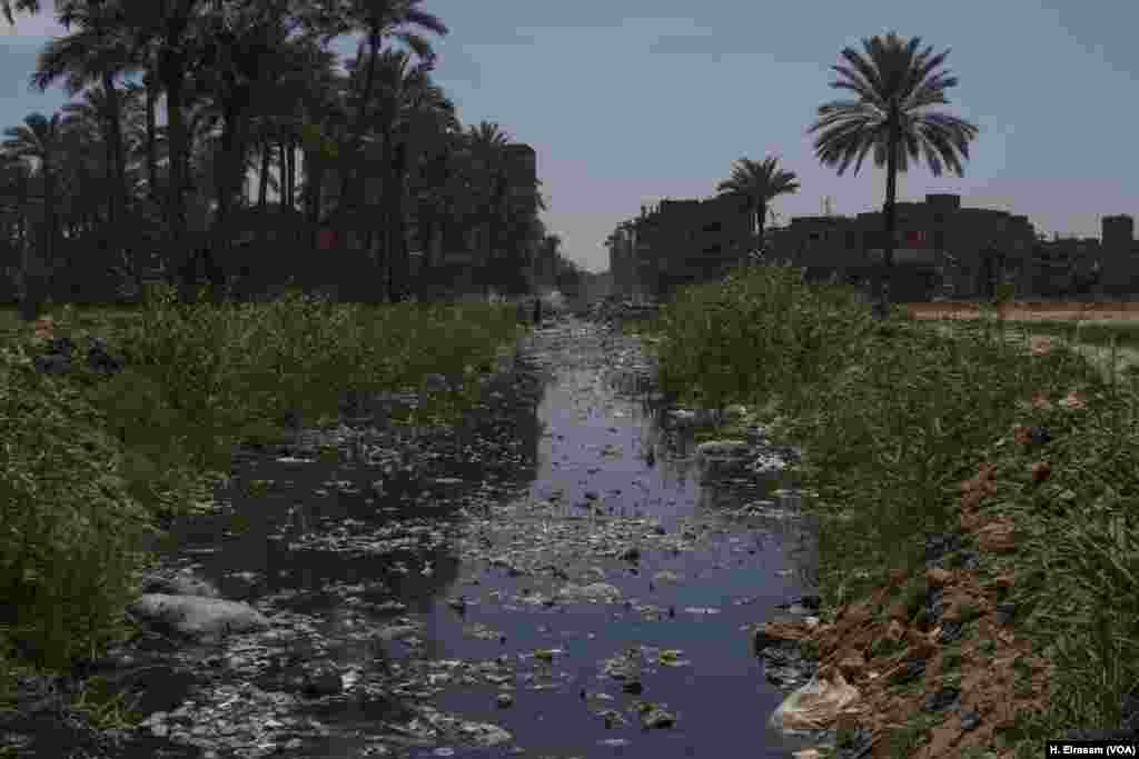Trash blows into a ditch used for irrigation in Al-Marg, a low-income district north of Cairo. Access to water that is free from garbage and industrial pollution is a challenge for many Egyptian farmers.
