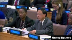 Hau Do Suan, Permanent Representative of Myanmar to the United Nations