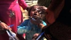 В Индии почти удалось искоренить полиомиелит