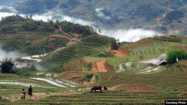 Sapa là một vùng văn hóa đặc trưng của các dân tộc thiểu số vùng núi phía Bắc Việt Nam; cùng với thời tiết, khí hậu, khung cảnh, thì nơi đây là một địa điểm tuyệt vời để đi du lịch, nghỉ dưỡng và tìm hiểu văn hóa vùng miền.