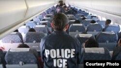 美國移民探員坐鎮飛機(ICE image)