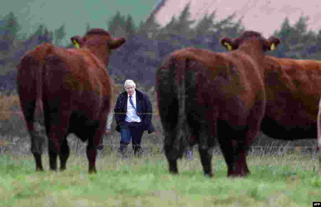 Britain's Prime Minister Boris Johnson is shown around Darnford Farm in Banchory near Aberdeen in Scotland.