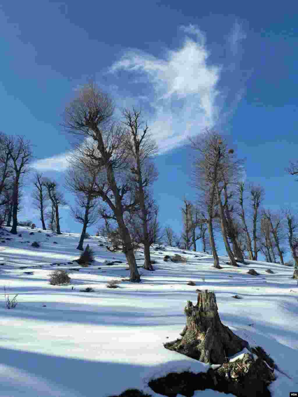 طبیعت زیبای زمستانی دم اجاق دهستان قلعه قافه بالا شهرستان مینودشت- گلستان عکس: سید محسن (ارسالی شما)