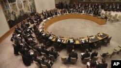 Заседание Совета Безопасности ООН. 22 января 2013 года