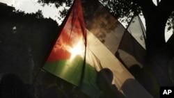 Egipćanka maše palestinskom zastavom u znak solidarnosti sa stanovnicima Gaze za vreme protesta zbog izraelske vojne operacije.