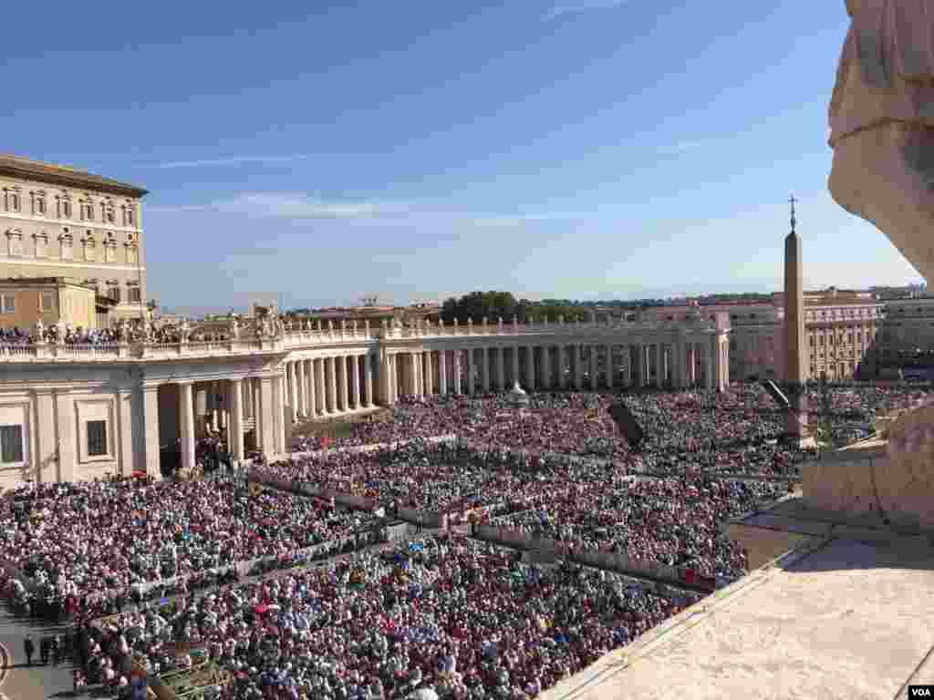 Más de cien mil peregrinos habían llenado la plaza para seguir la canonización ceremonia. [Foto: Celia Mendoza, VOA].