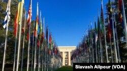جنیوا میں اقوام متحدہ کے دفتر کے سامنے مختلف ممالک کے پرچم لہرا رہے ہیں( فائل فوٹو)