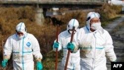 «Ֆուկուշիմա» ատոմակայանում հաջողվել է կանխել ռեակտորի պայթյունի վտանգը