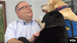 Dogs trained at Dogs4Diabetics will alert their owners when their blood sugar drops.