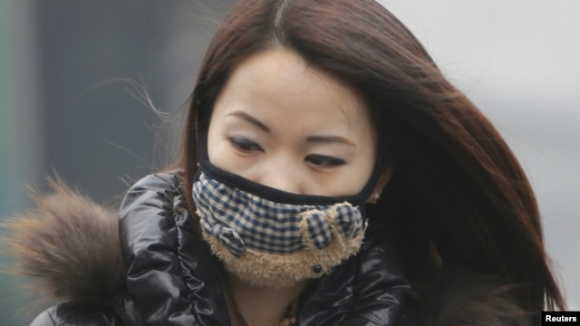 A woman wearing a mask walks on a heavy haze day during winter in Beijing January 29, 2013.