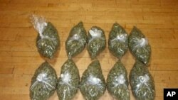 Di negara bagian Colorado dan Washington di AS, marijuana tidak dilarang digunakan orang dewasa untuk kesenangan pribadi (foto: Dok)..