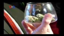 Legalizing Marijuana: Good Move, or Bad? (VOA On Assignment Feb. 21, 2014)