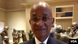 Cellou Dalein Diallo, le leader de l'opposition guinéenne