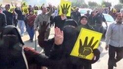 Египетская диаспора уже высказала свое мнение о новой конституции