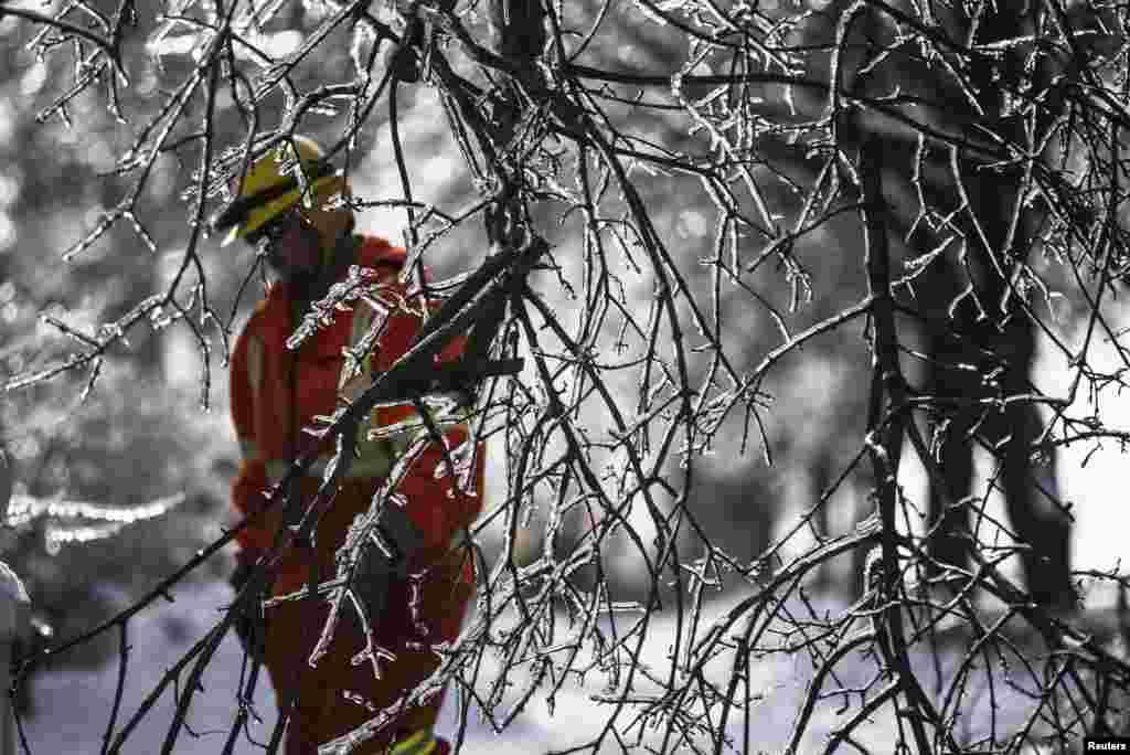 Seorang pekerja dari Perusahaan Toronto Hydro mencoba untuk memulihkan listrik di belakang dahan-dahan yang membeku di wilayah pinggiran Scarborough setelah badai es menimpa Ontario, Kanada. Lebih dari 30.000 penduduk tidak mendapat listrik sejak badai menerpa pada 22 Desember seperti dilaporkan media setempat.