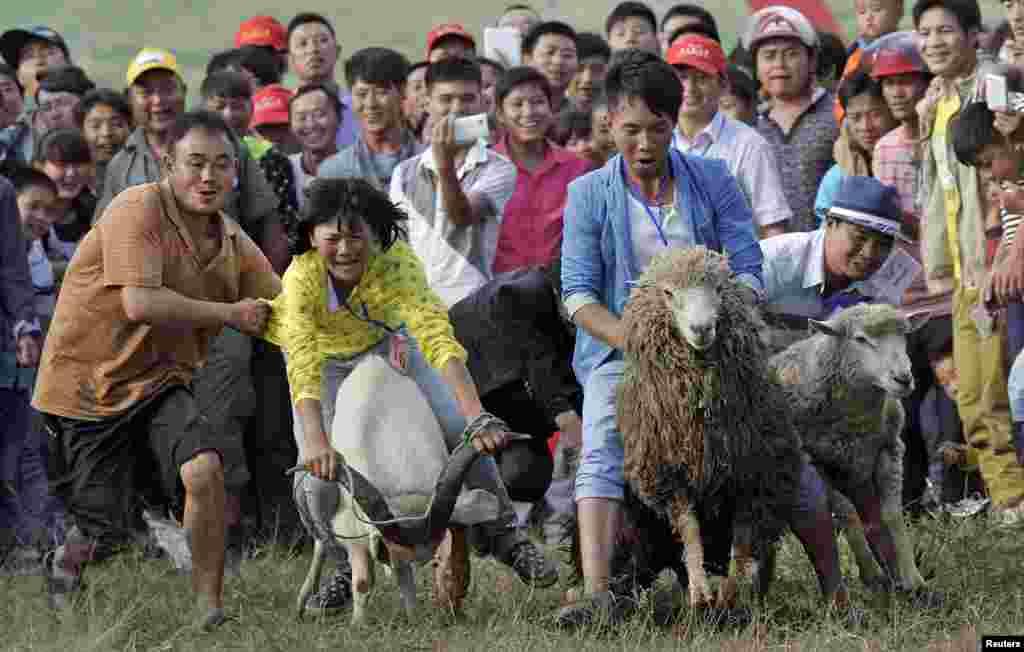 Warga menonton lomba naik kambing (domba) dalam festival tradisional di Fengshan, Guizhou, China.