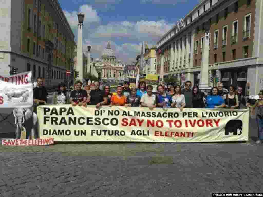 """""""Papa Francisco: Diz não ao marfim"""". Manifestação no Vaticano contra a caça furtiva em Moçambique. Foto de Francesco Maria Mantero."""