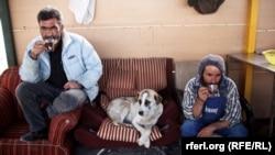 Tehran yaxınlığındakı Həştgerd şəhərində heyvanlar üçün sığınacaq