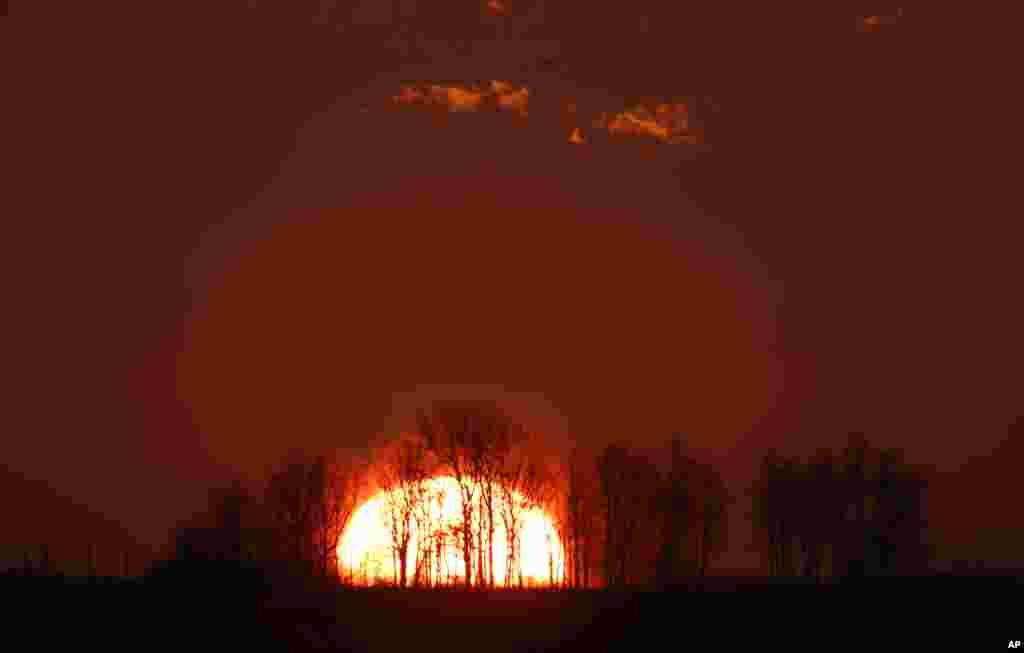 Siluet pohon-pohon saat matahari terbit di pinggiran kota Minsk, Belarusia.