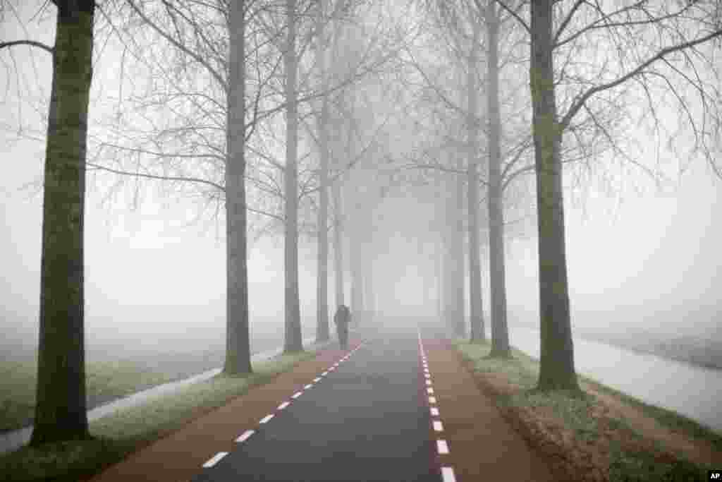 A cyclist rides on a foggy day in Amstelveen, near Amsterdam, Netherlands, where temperatures dropped to a few degrees below the freezing point.