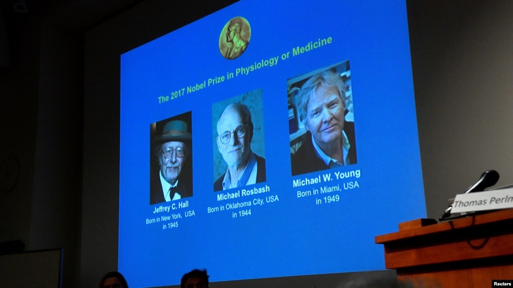 Nobel Prize for Physiology or Medicine, Michael Rosbash, Michael W. Young, Jeffrey C. Hall