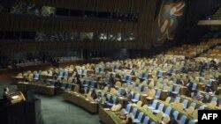 Генассамблея ООН поддержала грузинскую резолюцию о возвращении беженцев