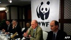 Как глобальные корпорации могут повлиять на экологическую политику?