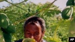 Tigray- Model Farmer, Gidey Jerdin