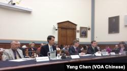 美國國會共和黨眾議員羅拉巴克(左一)和三位專家在聽證會上作證