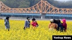 북한 도발로 한국 여행업계 타격