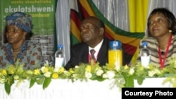 A large number of Zimbabweans participated in the formulation of the nation's new constitution.