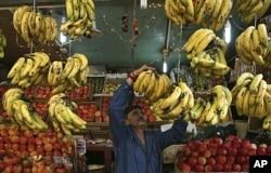 A fruit seller arranges bananas at his stall along a road in Jammu, India November 2011. (AP FILE PHOTO)