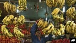A fruit seller arranges bananas at his stall along a road in Jammu, November 3, 2011.