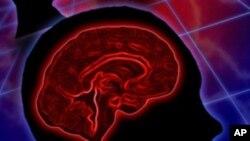 การวิจัยแสดงว่าคนตาบอดสามารถใช้สมองส่วนของการมองเห็นเพื่อรับเสียงและการสัมผัสแทนได้
