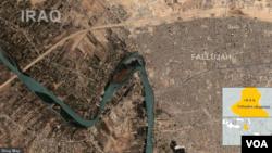 Wilayah Fallujah, Irak (Foto: dok).
