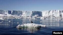 지난 2010년 1월 남극의 한 빙하 주변에서 녹고 있는 얼음 덩어리 위에 펭귄이 서있다.