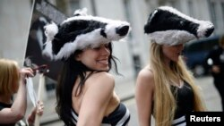 Women wearing badger costumes take part in a protest against the cull of badgers, in central London June 1, 2013.