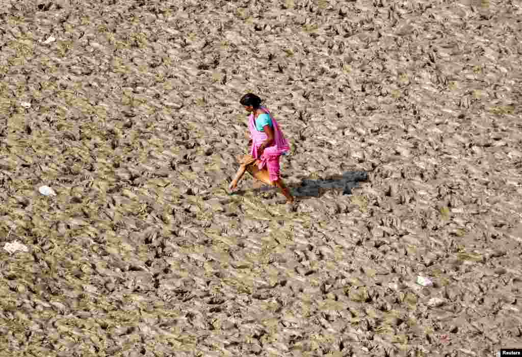 A woman walks on the muddy banks of the Ganges river in Allahabad, India.