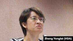 台灣在野黨民進黨立委蕭美琴 (美國之音張永泰拍攝)