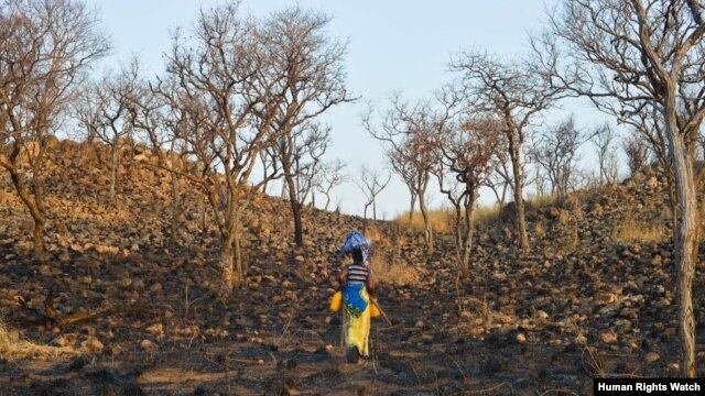 The farmland provided to Senolia S., upon her resettlement to Cateme, was reclaimed by its original cultivators. (Samer Muscati/Human Rights Watch)