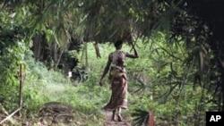 刚果一名妇女进入雷区