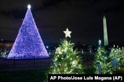 Різдвяна ялинка біля Білого дому у Вашингтоні, США